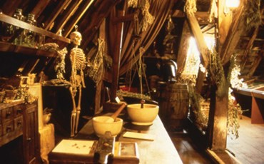 The Old Operating Theatre Museum and Herb Garret)